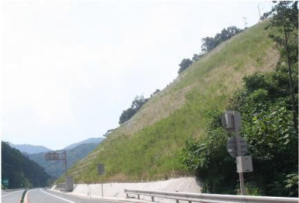 萩・三隅道路 飯井改良その4工事